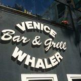 The Venice Whaler pix